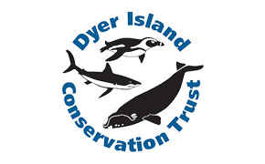 Dyer Island Conservation