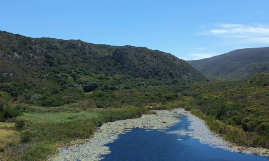The launch of the Grootbos Environmental Centre.