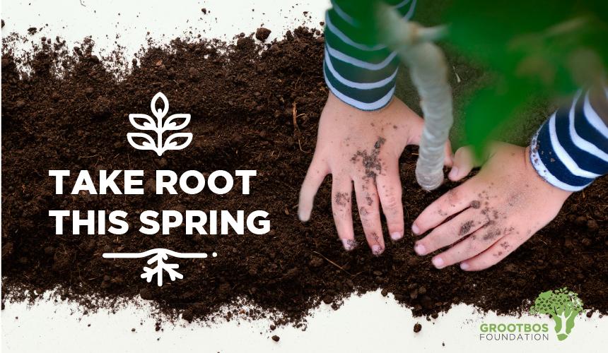 Take root this Spring 2021